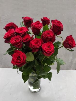 Красные розы Субмарина