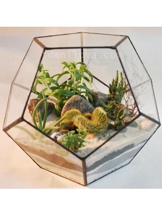 Флорариум с кактусами